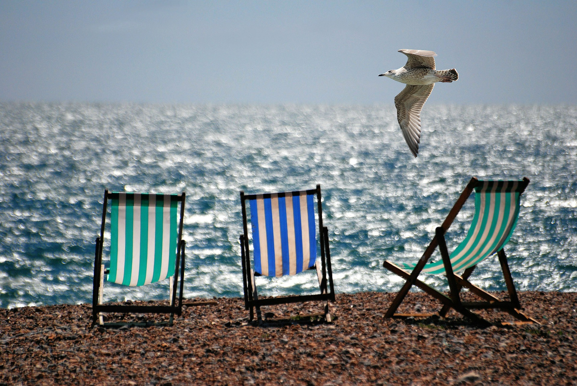 Deckchairs at the beach.